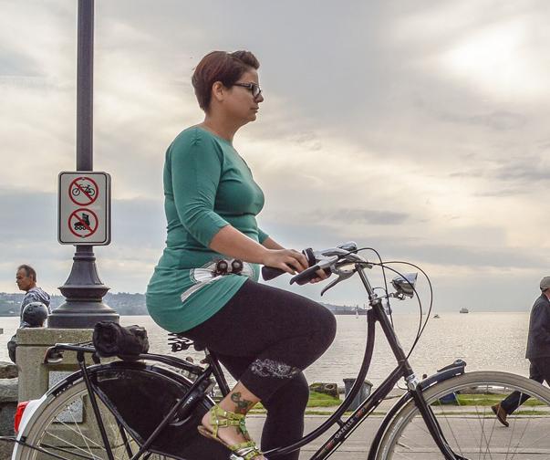 Gazelle Tour Populair Export T8 City Bike Review