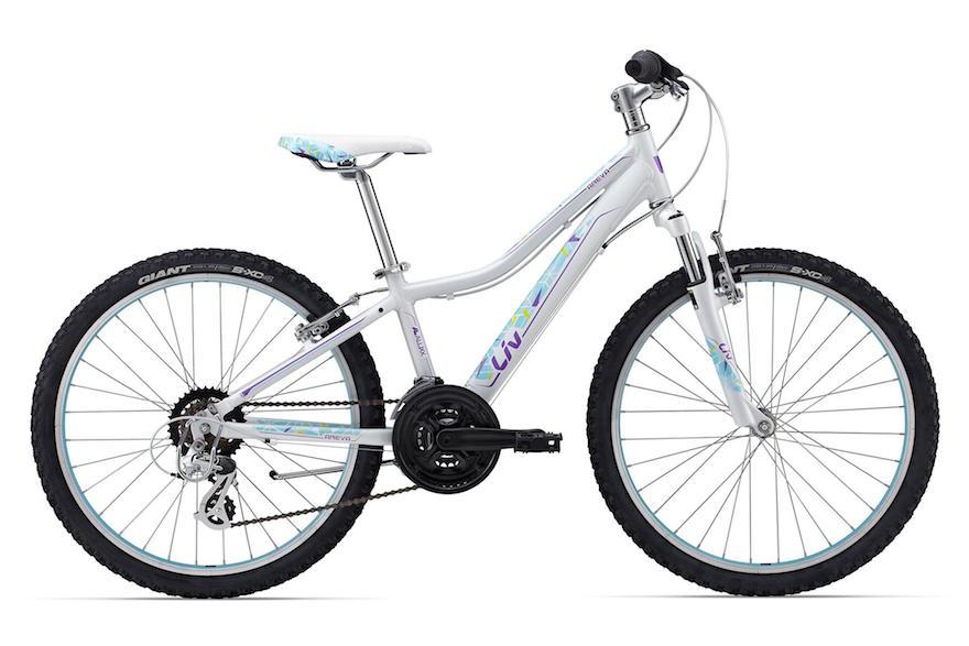 Schwinn Allston 1 Eight Speed Bike Review · Liv Areva 24″ Kids Bike Review 403644c49
