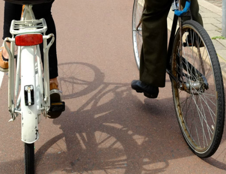 We Love this Endearing Dutch Cycling Activity