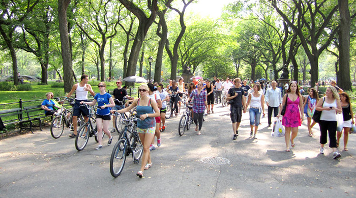 Explore New York's Greener Side with Central Park Bike Tours