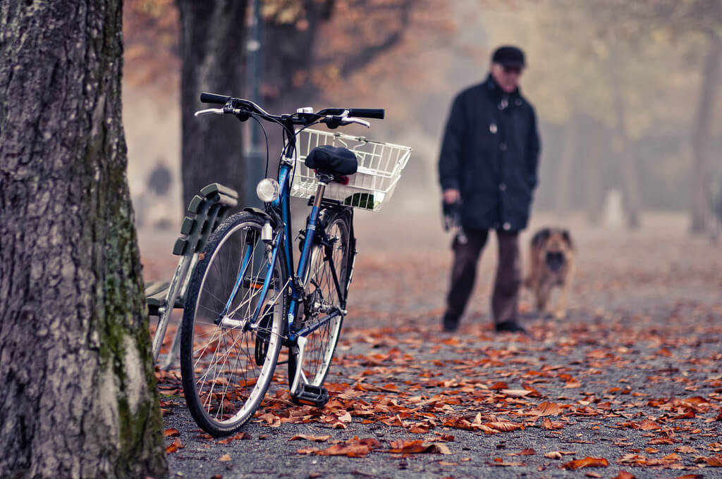 Autumn cycling - Zurich
