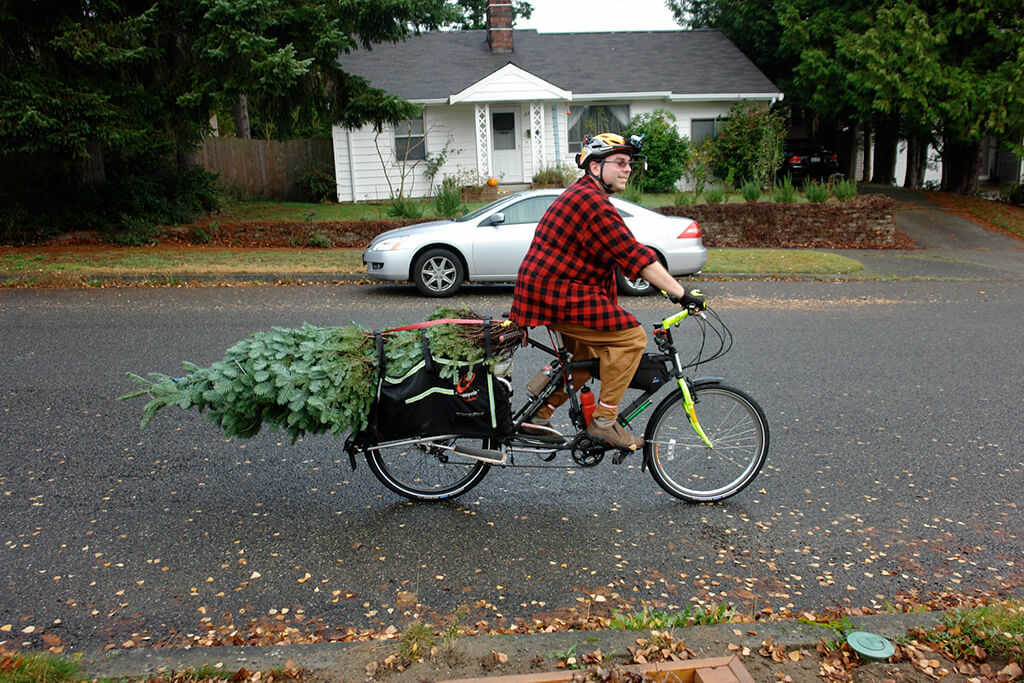Man with Christmas tree attached to his longtail bike.