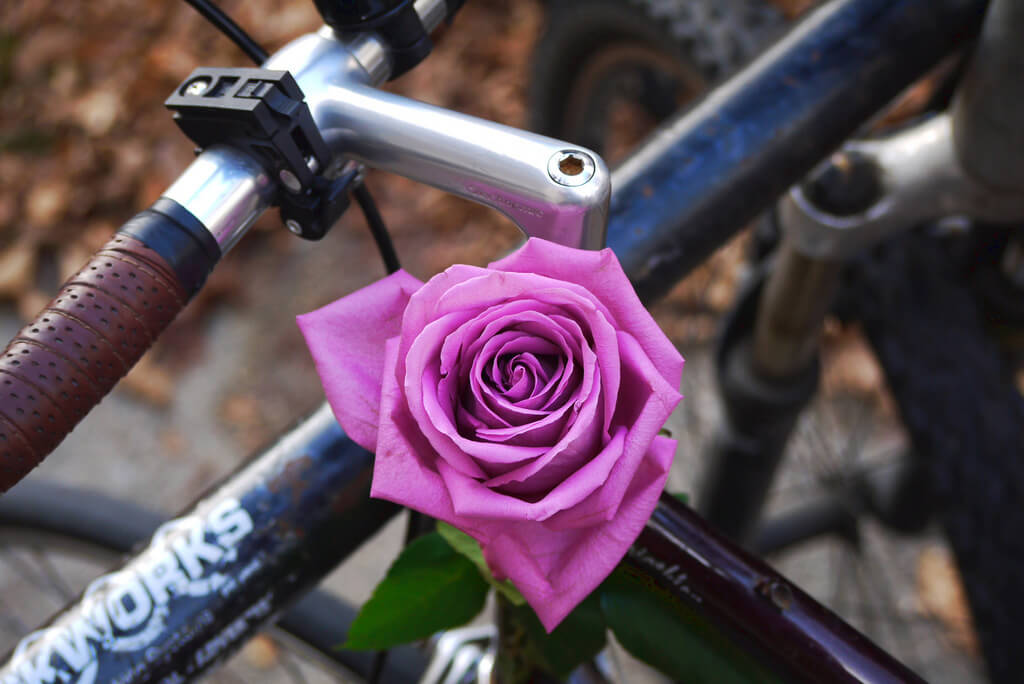 How to Show Your Bike a Little Love this Valentine's Day