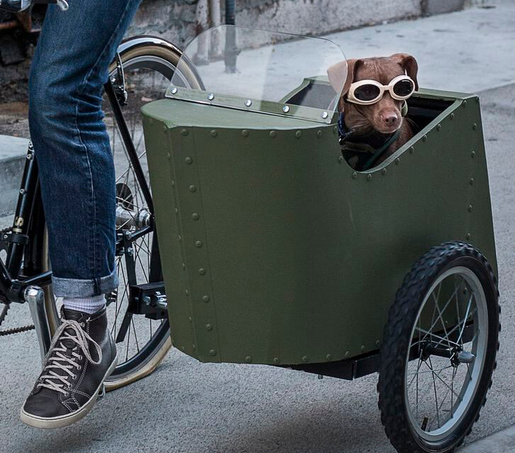 Stop Everything You're Doing and Build a Bicycle Sidecar for Your Dog