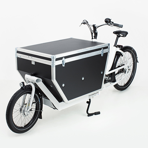 The Urban Arrow Cargo E-Bike