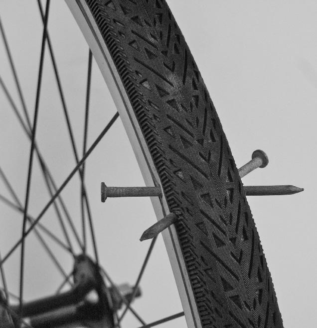Flat Proof Tires Momentum Mag